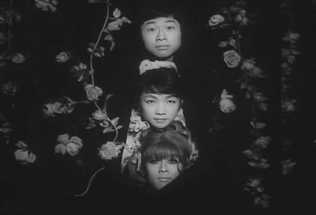 funeral parade of roses3